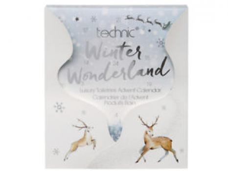 Technic Adventkalender Winter Wonderland